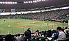 Seibu_dome_20130428